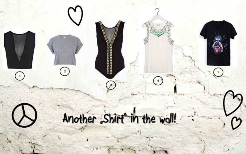 "Another ""shirt"" in the wall!"
